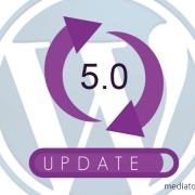 WordPress update 5.0 onderhoud